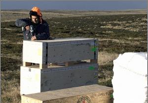 Trabajos de identificación de Soldados Argentinos en Malvinas