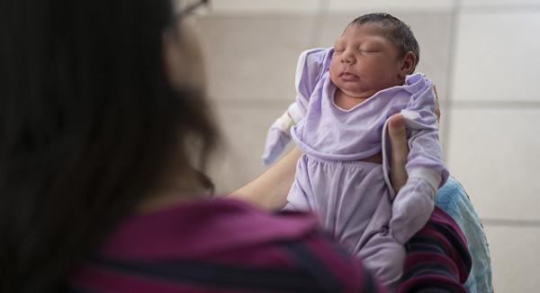 microcefalia por zika en Salta