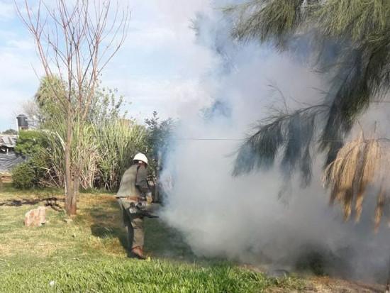 Dengue en el Chaco