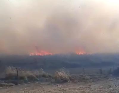 quemas de campos en Chaco y Santiago del Estero